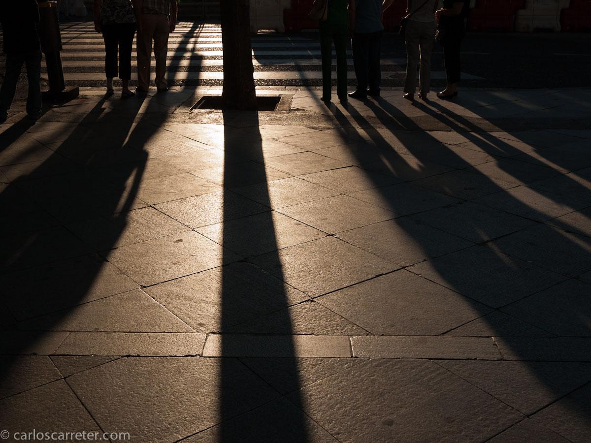 Luces y sombras en el atardecer