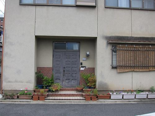 Straight House straight Plants