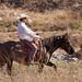 Paso Robles Horse Ranch 3