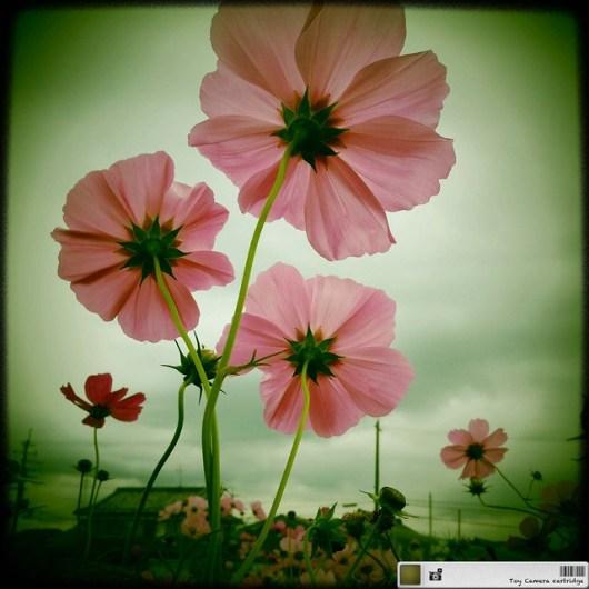 2011-11-05 at 01.29.57_edited-1