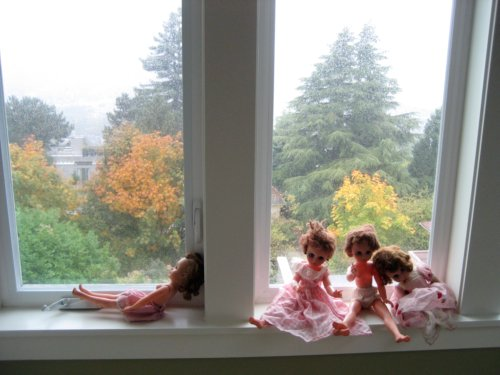 Dolls in a window
