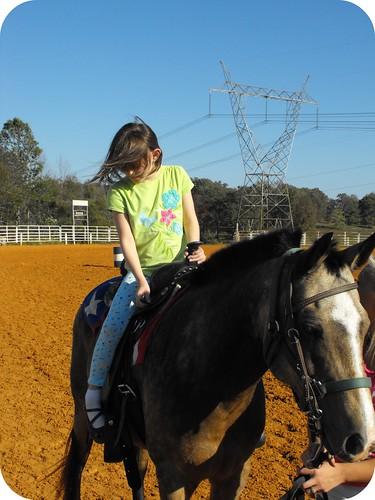 Horses 13 - framed