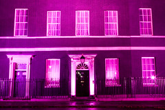 Breast Cancer Campaign - 10 Downing Street Ill...