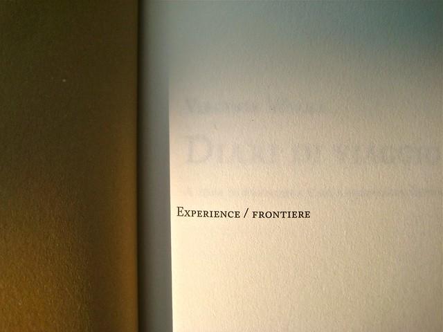 Virginia Woolf, Diari di viaggio. Mattioli 1885. [responsabilità grafica non indicata]; [imm. di cop. senza attribuzione]. p. dell'occhietto (part.), 1