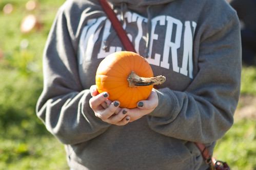 PumpkinPatch-17