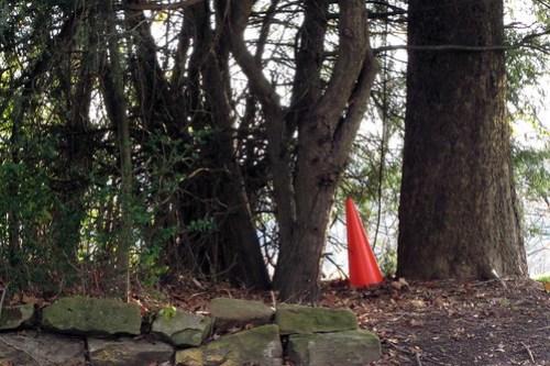 Scavenger Hunt: Orange and Brown