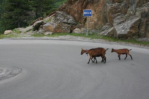 Ride to Kaunertal 2011