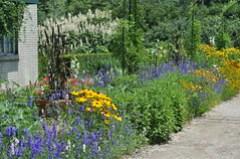 A View from the Monet Garden