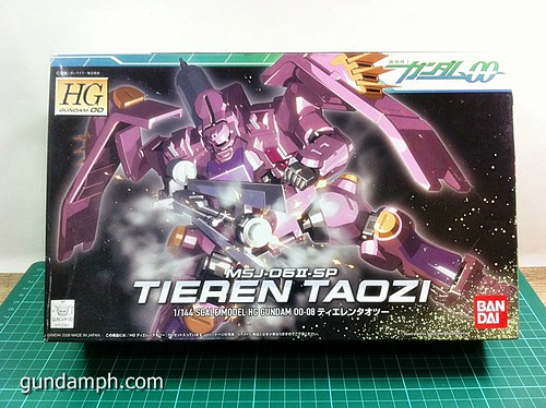 HG 144 Tieren Taozi Review OOB Build (1)