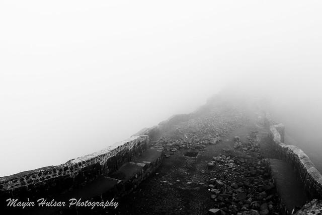 Engulfed in fog
