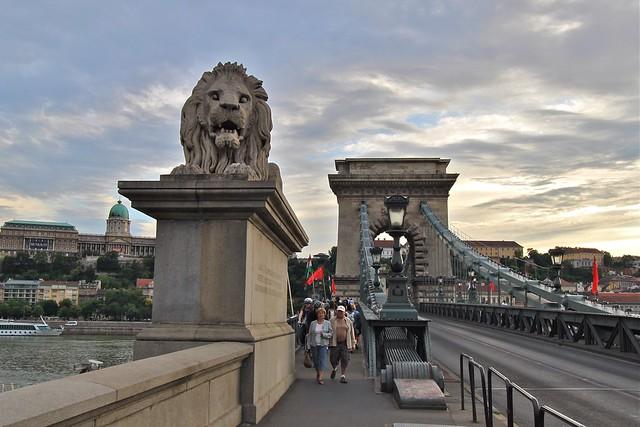 Les lions du pont à chaînes, Budapest