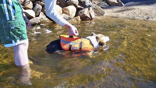 Gren Learns to Swim