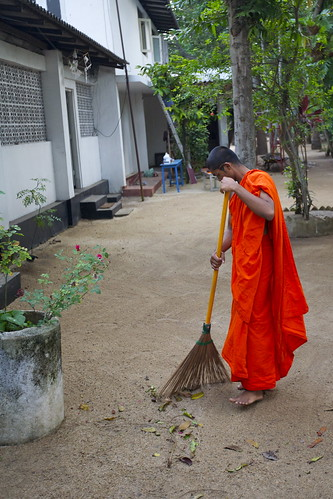 A monk sweeping at his temple in Dehiwalla