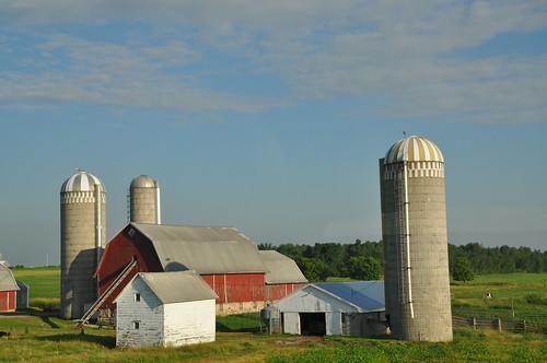 Farm scene by N-Sai