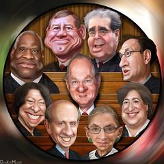 The Supreme Court 2011