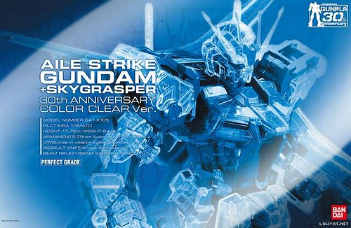 PG Aile Strike Skygrasper {30th Anniversary # Extra Finish} (2)