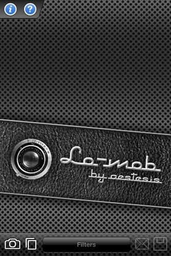 Camera Roll-1482