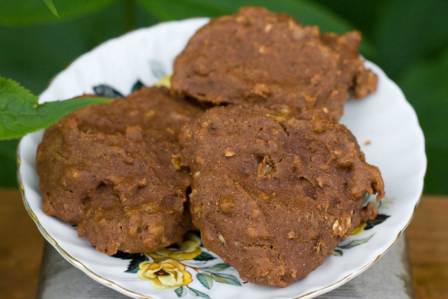gluten free vegan cookies