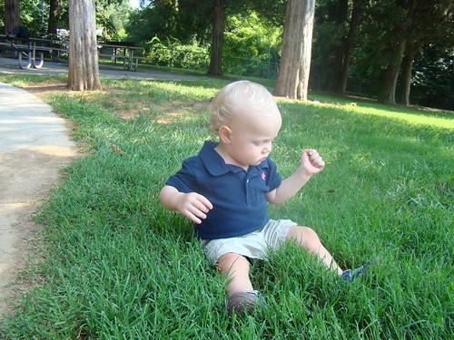 Henry Still Doesn't Like Grass