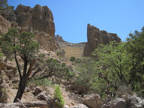 Picture from Devil's Hall Trail