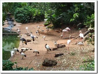 Mitchel Park Zoo