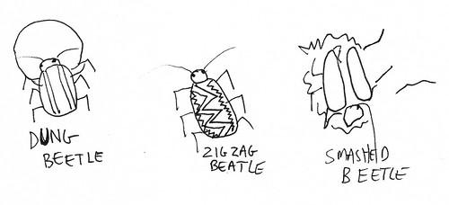 beetlesth