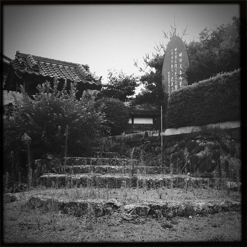 Overgrown. Abandoned.