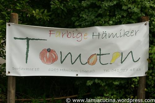 Hämiker Tomaten 0_2011 08 05_5346