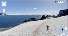 Google Earth penguin