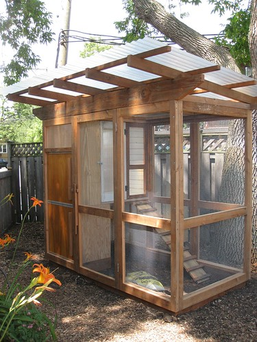 My new chicken coop