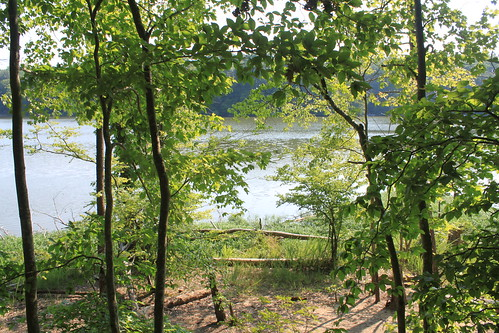 Bull Run Occoquan Trail - Bull Run Marina - Return View From Trail