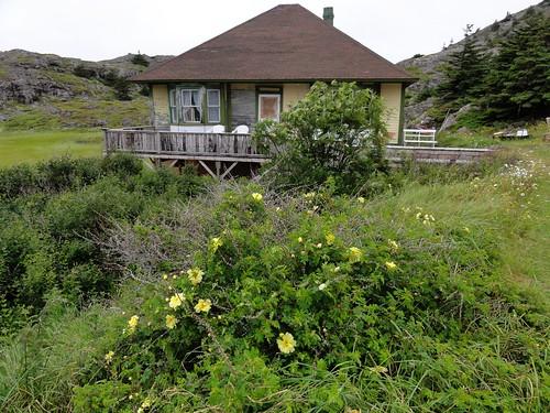 Jon & Judith's House