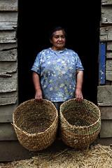 Sin Título-Meulín-Chiloé
