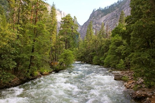 Rivers in Yosemite