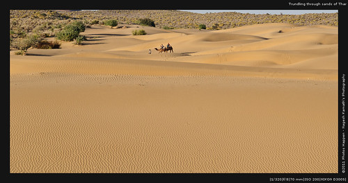 Trundling through sands of Thar