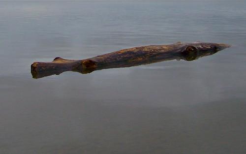 Big Wood Still Water by WETCLOUD