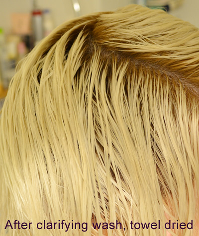 How to Bleach your Hair Platinum Blonde or White | Krista