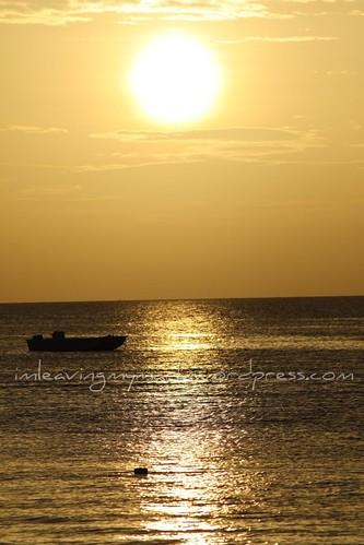 WM Antigua 8