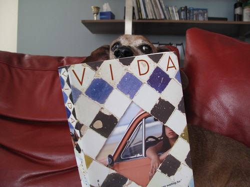Ziggy the Wiener Dog reading Vida by Patricia Engel