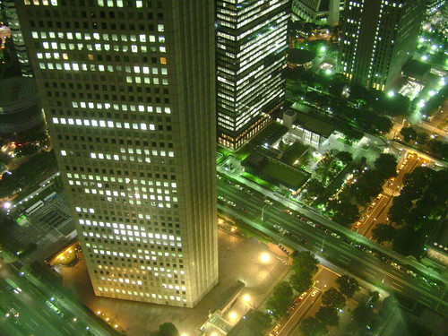 DSC04209Night view from Tokyo Metro Government center