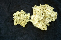 butterfly bush dye: roving