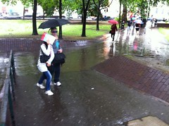 euston puddle 201107 d