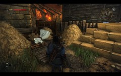 Witcher 2 Easter Egg