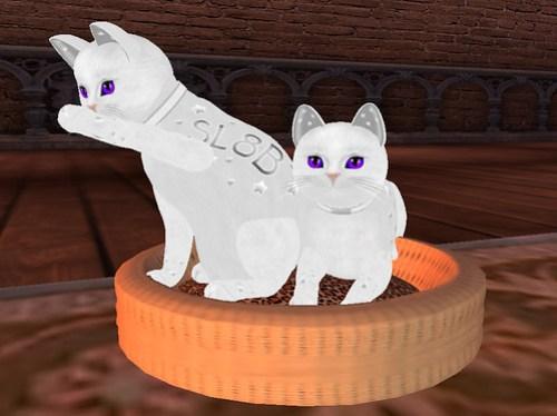 SecondLife KittyCatS