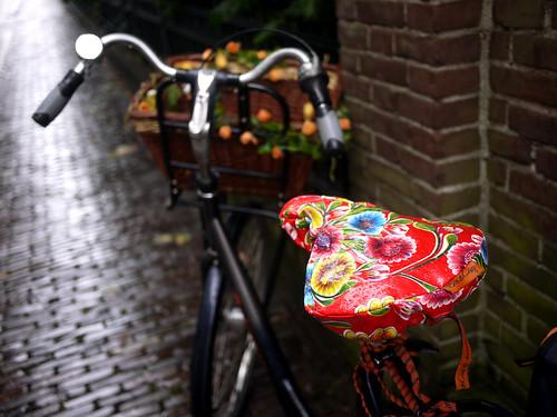 Flowery Bike Seat