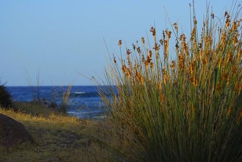 Un rinconcito al lado del mar / Un petit coin à côté de la mer by Miguel Ángel Yuste