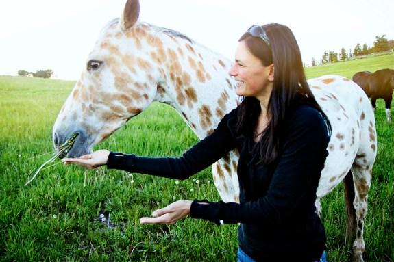 Black Mountain Colorado Dude Ranch feeding spotted horse