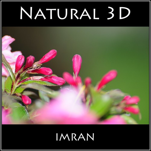 Natural 3D - IMRAN™ -- 100+ Views Within Hours Of Posting! by ImranAnwar