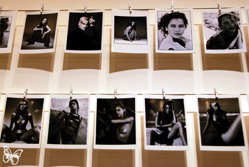 Made In Polaroid  - Phillips de Pury NY