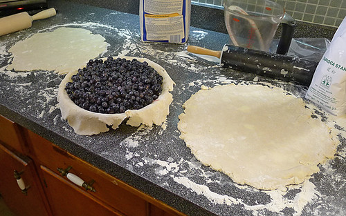 Blueberry 179